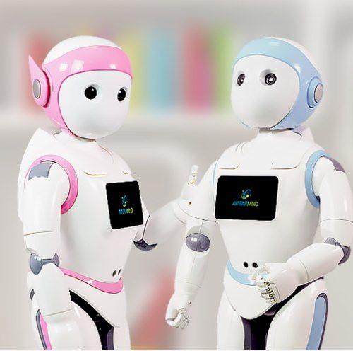 IPal, the robotic nanny
